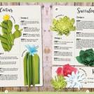 Sarah Dennis Paper Plants News Item